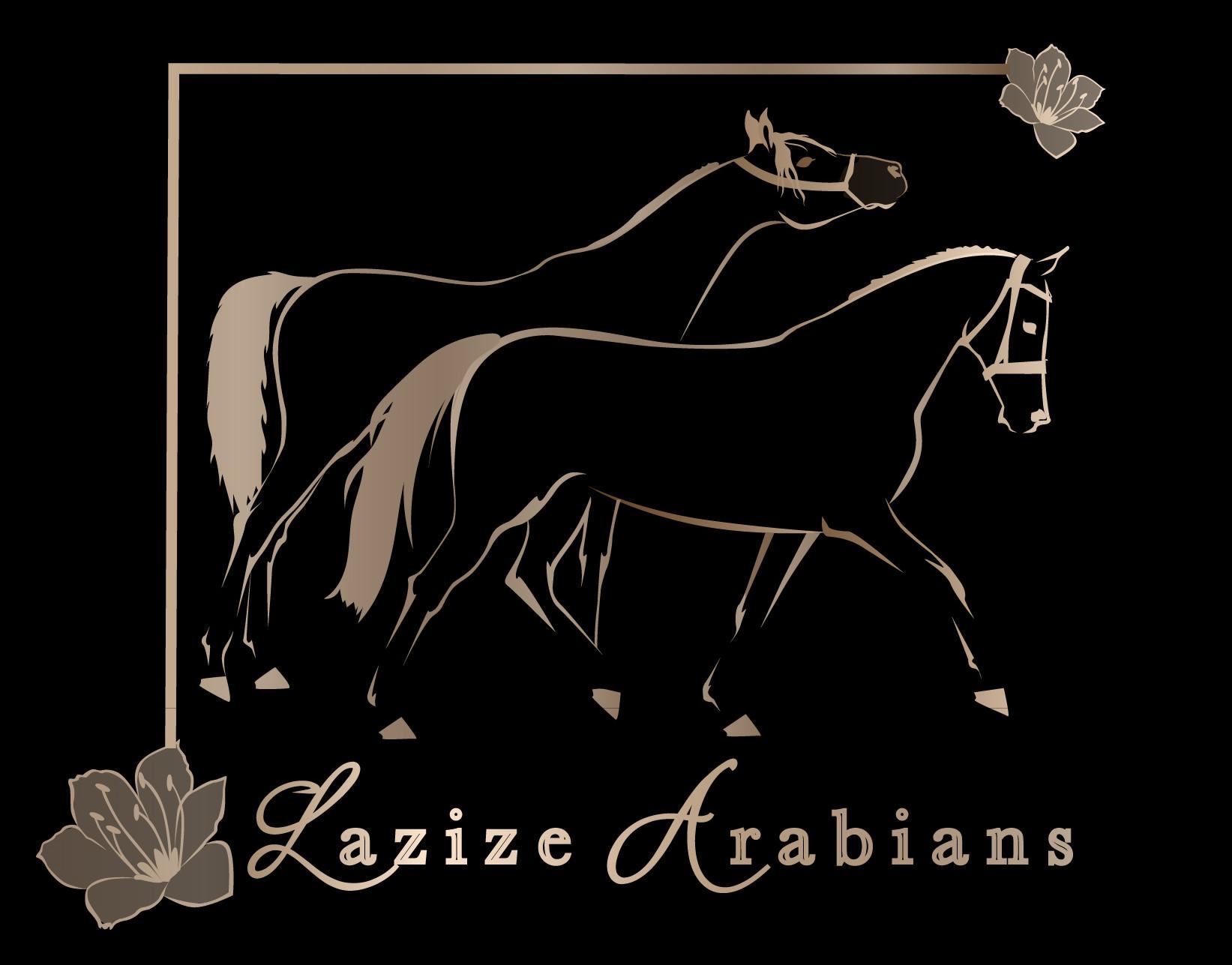 Lazize logo